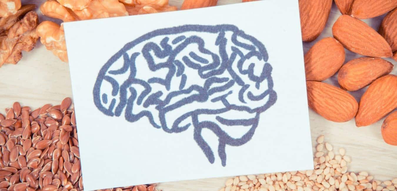 Hjernen og fordøjelsen